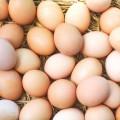 eggs - shutterstock_315750212