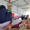 refugees-amar