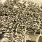Kirkuk aerial view