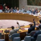 UN Security Council 140618