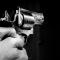 gun 4 (Pixabay)