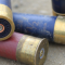 gun cartridges, ammunition (Pixabay)